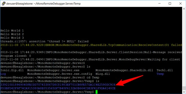 Implementing Visual Studio Remote Debugging On the